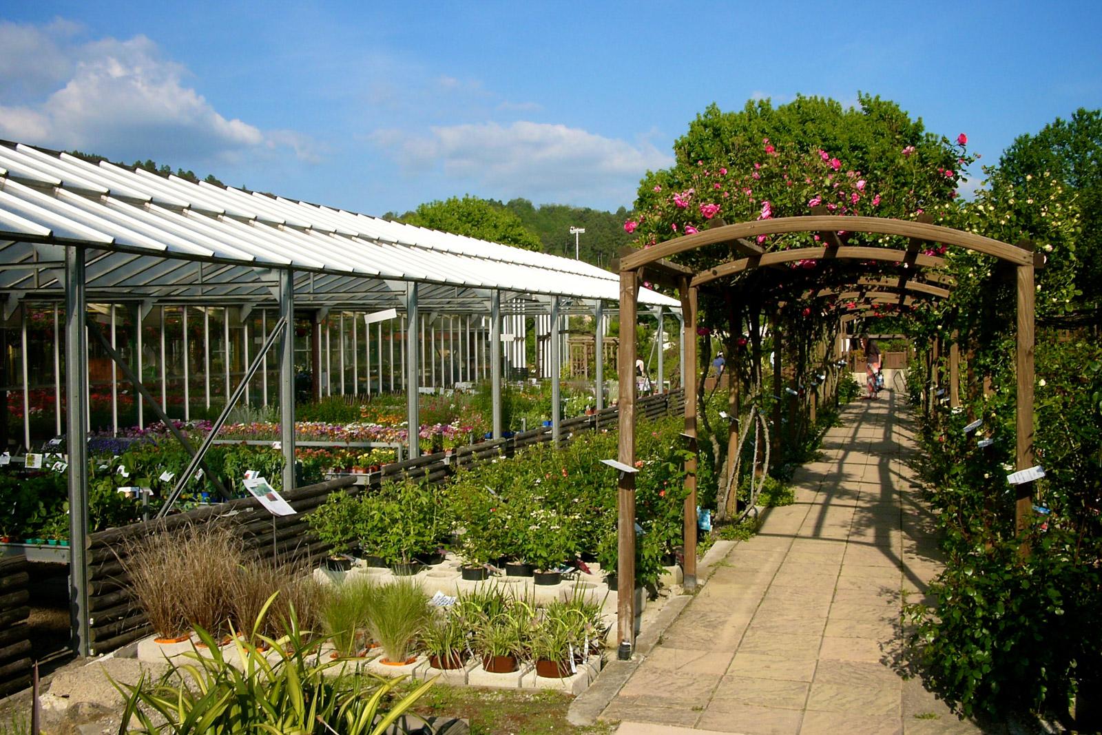 Petits jardins à côté des serres