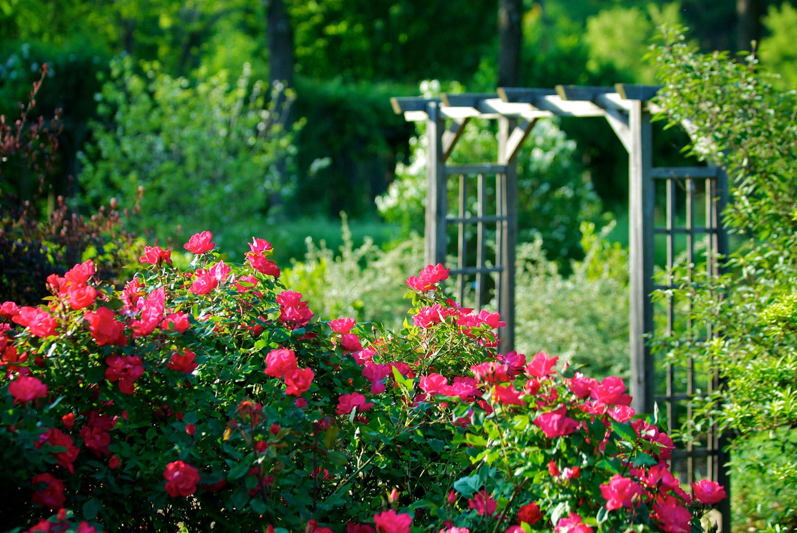 Le jardin aux mille fleurs